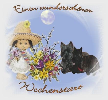 An den Beitrag angehängtes Bild: http://vom-dreamhouse.de/assets/images/gb3.jpg